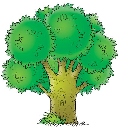 kiddish: Tree