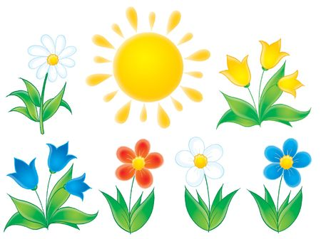 kiddish: Summer flowers