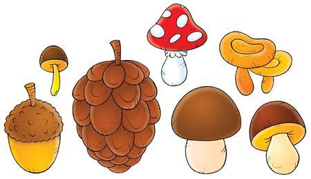 kiddish: Mushrooms
