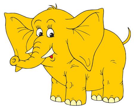 funny image: Elephant Illustration