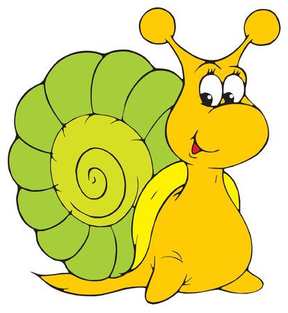 Snail Stock Vector - 2611413