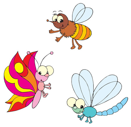 dragon-fly, butterfly and bee  Vector