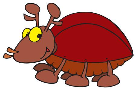 ridiculous: Beetle Illustration