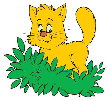 Cat Stock Vector - 2634293