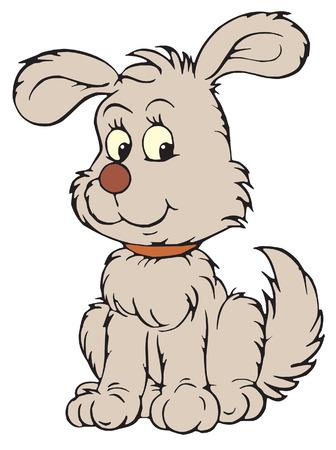 Grey pup  Vector