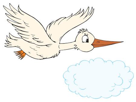 kiddish: White stork  Illustration