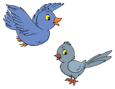 pajaro dibujo: Aves