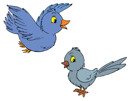 bird drawing: Birds