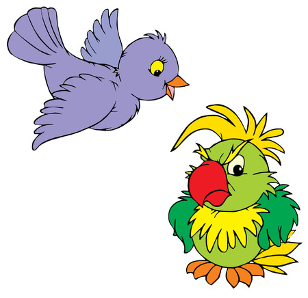 Sparrow and parrot  Vector