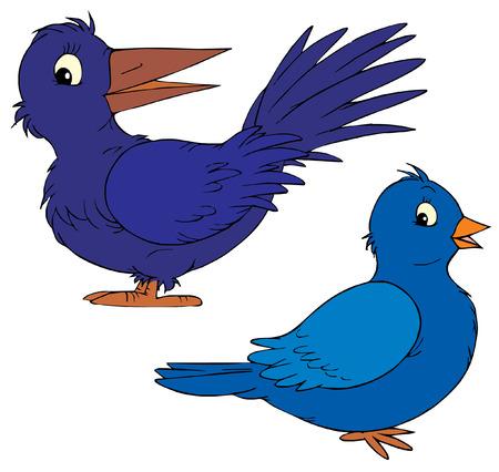 paloma caricatura: Raven y la paloma  Vectores