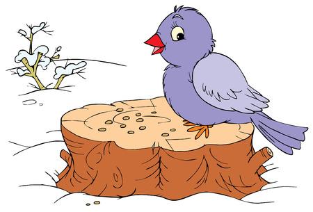 Winter bird  Illustration