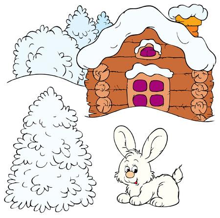 wild rabbit: Winter Illustration