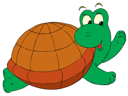 funny picture: Turtle