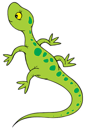 Lizard Stock Vector - 2631209