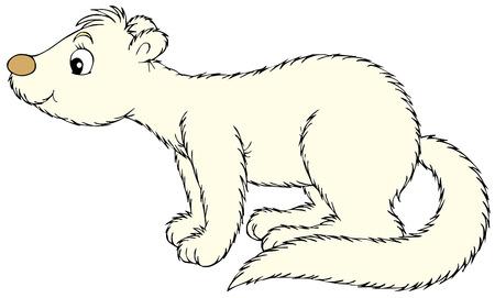 mink: mink