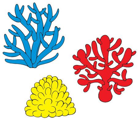 seaweed: corales Vectores