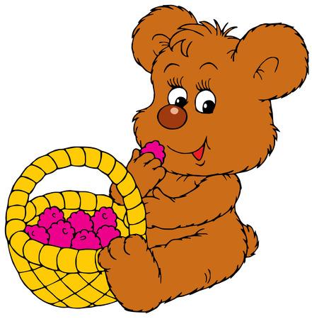 ourson: Bear-cub et de baies m�res  Illustration
