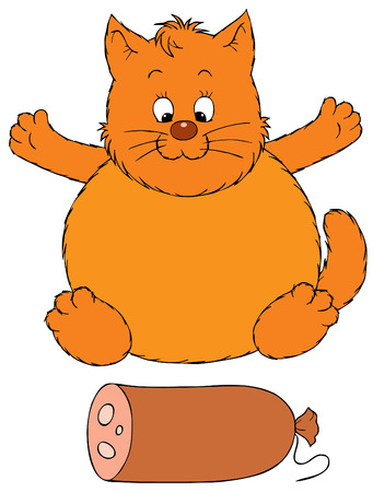 Fat cat and delicious sausage Stock Vector - 2816351