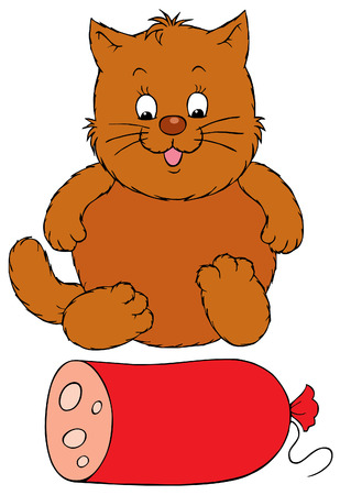 Fat cat and delicious sausage Stock Vector - 2816350