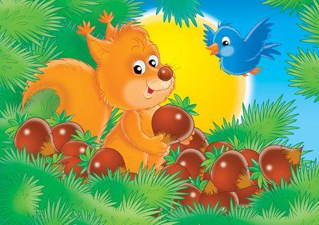 Squirrel Stock Photo - 2966863
