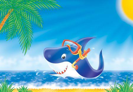 White shark Stock Photo - 2966872