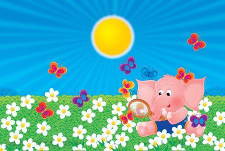 pink elephant Stock Photo - 2966881