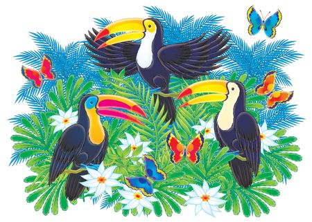 Toucans Stock Photo - 2966883