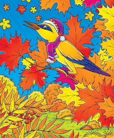 birdie: Oriole  LANG_EVOIMAGES