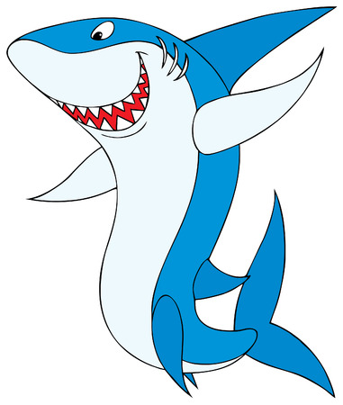 squalo bianco: Shark Vettoriali
