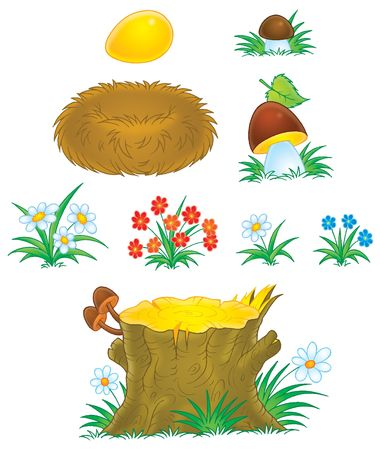 Mushrooms, flowers, stump and nest photo