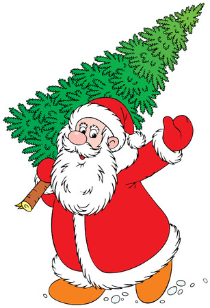 christmas fir: Santa Clause Illustration