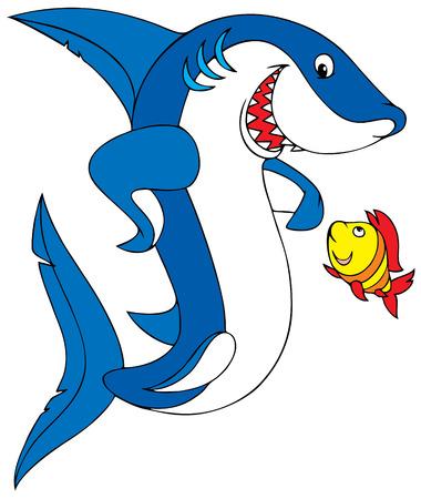 squalo bianco: Great White Shark