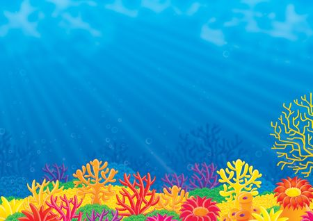 Coral reef Stock Photo - 3558175
