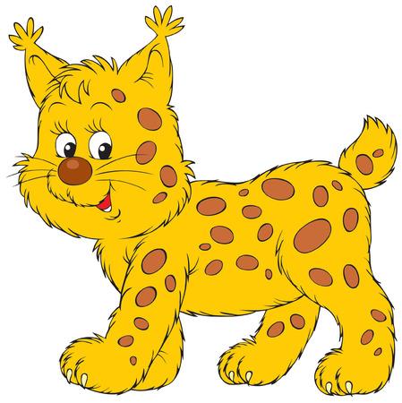 lince: Lynx