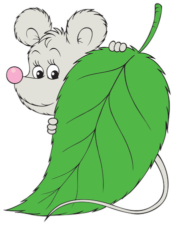 timid: Grey mouse Illustration