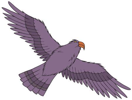 raptorial: Eagle
