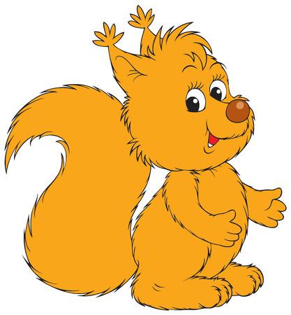 absurd: Squirrel