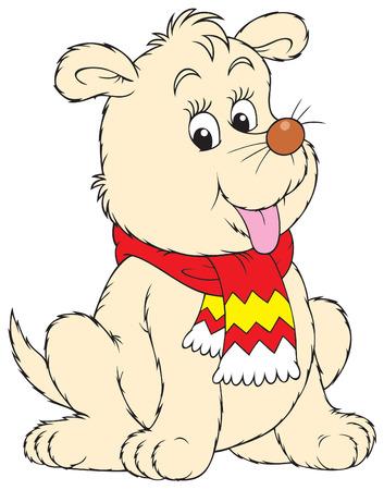 kiddish: Pup