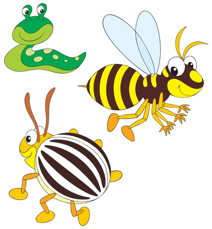 Wasp, potato beetle and slug Vector