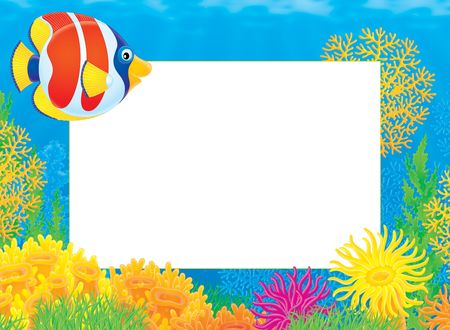 Photo frame with Coral Fish Stock Photo - 4752499