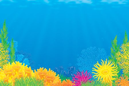 Coral reef Stock Photo - 4752498