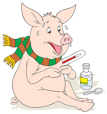 infectious disease: Swine flu Illustration