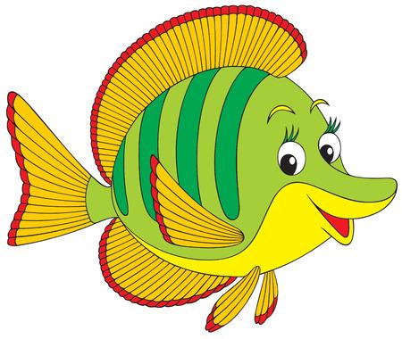 poisson aquarium: Coral poisson Illustration