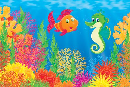 hippocampus: Coral fish and seahorse