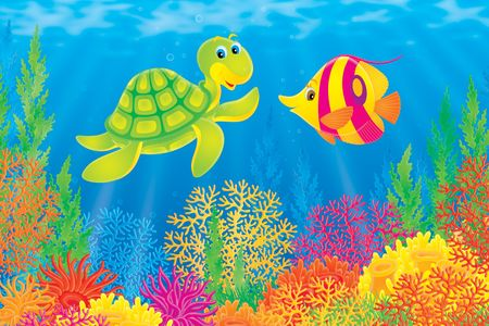 Coral fish and turtle Stock Photo - 4780048