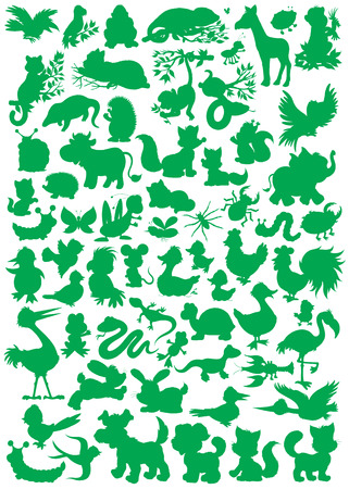cock duck: Animal silhouettes Illustration