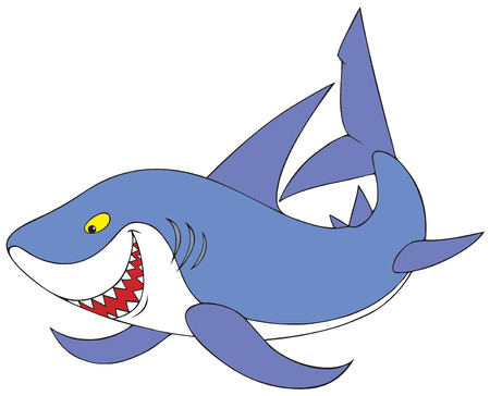 carcharodon: Shark Illustration