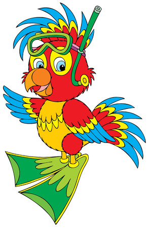 Parrot Diver Stock Vector - 5563494