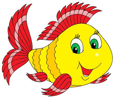 white  fish: Coral fish