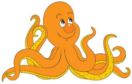 octopus: Octopus